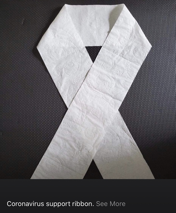 Coronavirus support ribbon with toilet paper